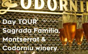 TOUR Sagrada Familia, Montserrat & Codorníu winery