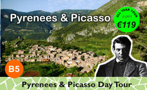 Pyrenees Mountains & Picasso Day Trip from Barcelona