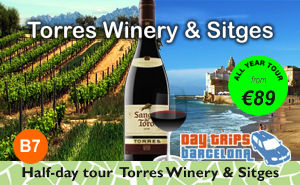 Half-day Wine tour to Torres Winery and Sitges.