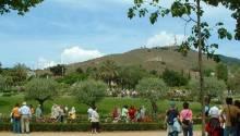 Parc de Cervantes i Roserar