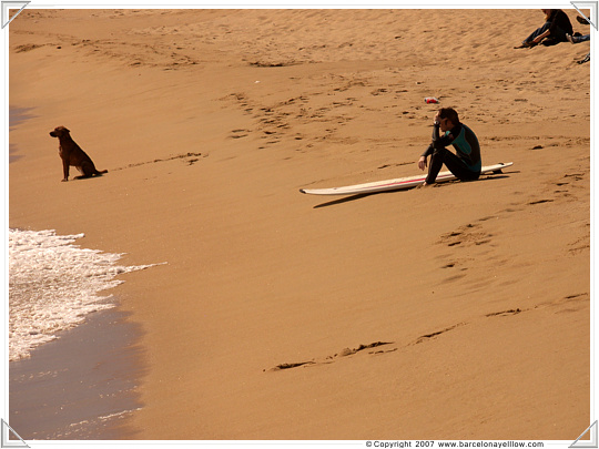 Surfing on Barcelona beaches