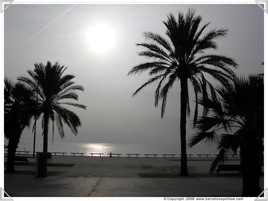 Photos Barcelona Poblenou