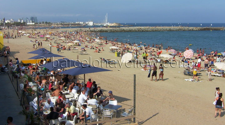 Beach cafes Barceloneta beach