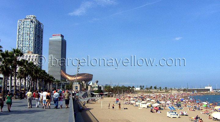 720x400_barcelona_beaches_passeig_maritim