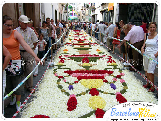 Click to see pictures Sitges flower carpet festival