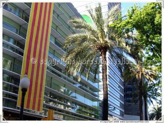 Barcelona Sant Jordi flags