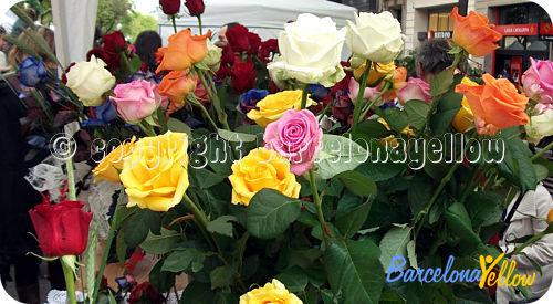 St Jordi Barcelona roses