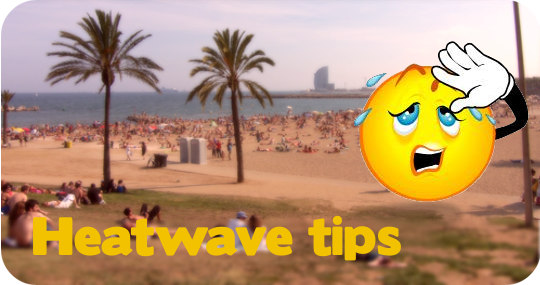 heatwave_tips