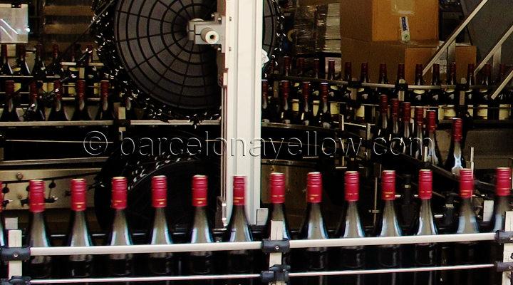 torres_wine_tours_barcelona