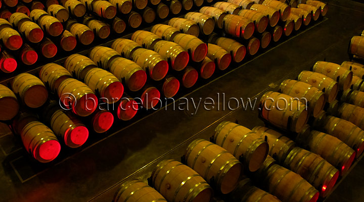visit_torres_winery_barcelona