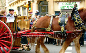 Pictures Tres Tombs Sant Antoni