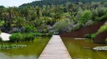 Jardi Botanic - Barcelona botanical gardens