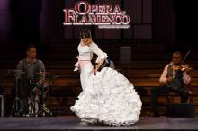 Opera y Flamenco show Barcelona