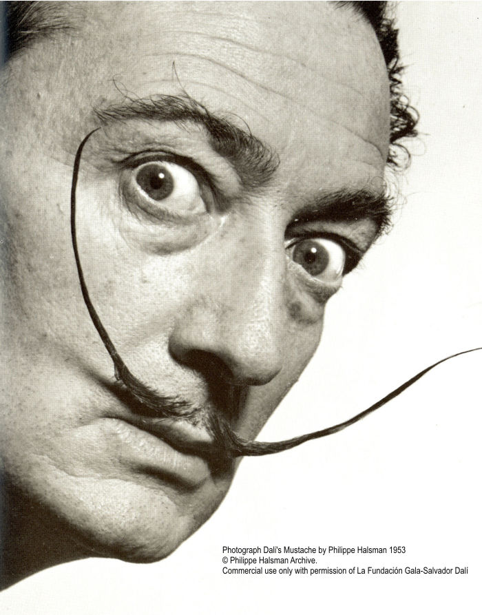 the good life an el salvador dali biography Salvador dalí, in full salvador felipe the most interesting and revealing of dalí's books is the secret life of salvador dalí biography of salvador dali.