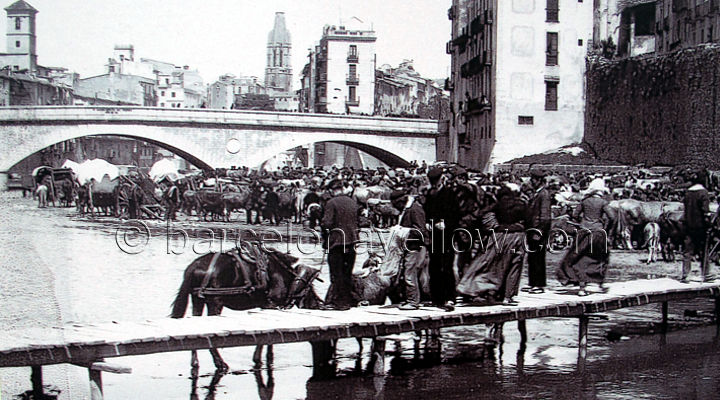 girona_old_photographs
