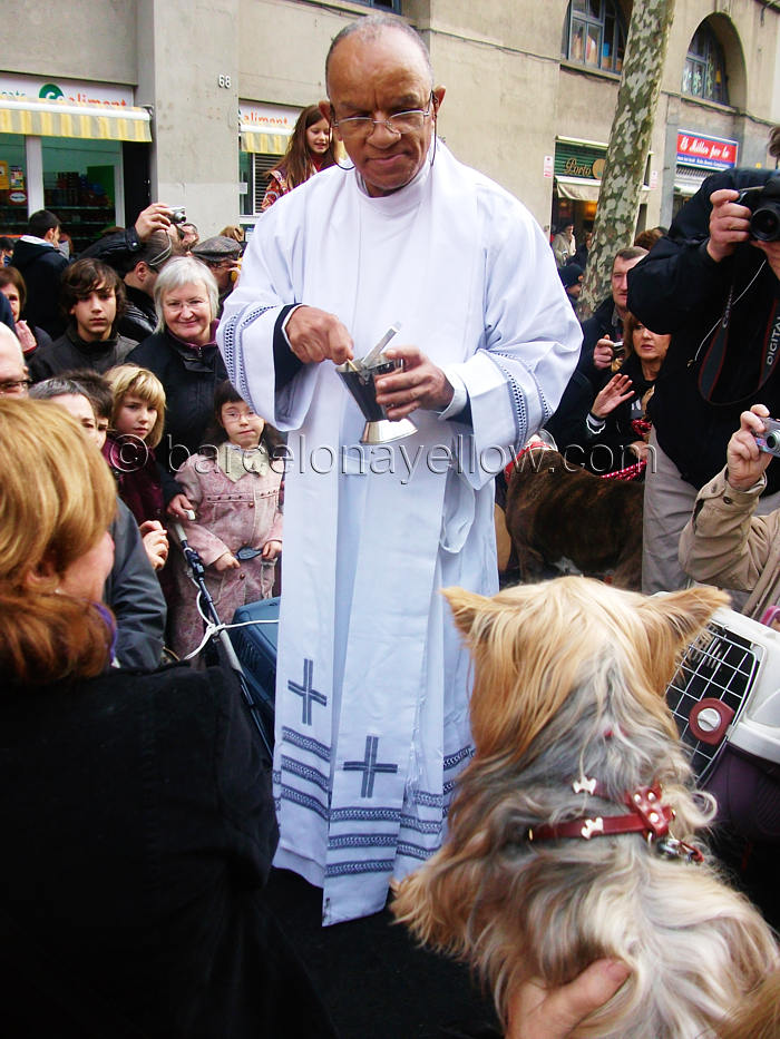 tres_tombs_sant_antoni_pet_blessing